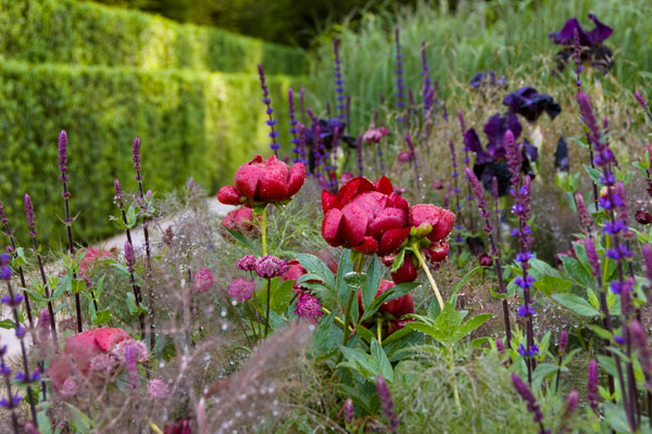 A 5 Day Irish Gardens Of The South Tour, Including West Cork And County  Kildare.